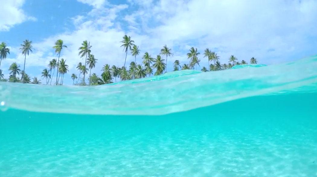 Camping à Moorea en Polynésie française !