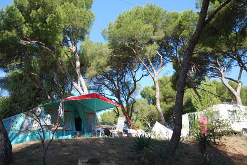 Camping - Avignon Parc - Vedène - Provence-Alpes-Côte d'Azur - France