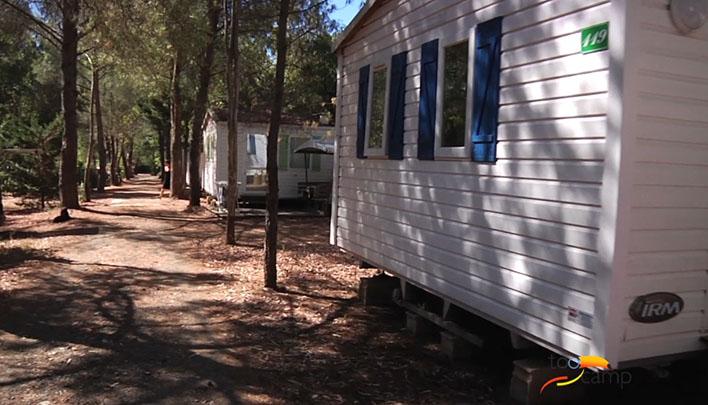 Camping - La Londe-les-Maures - Provence-Alpes-Côte d'Azur - La Pascalinette