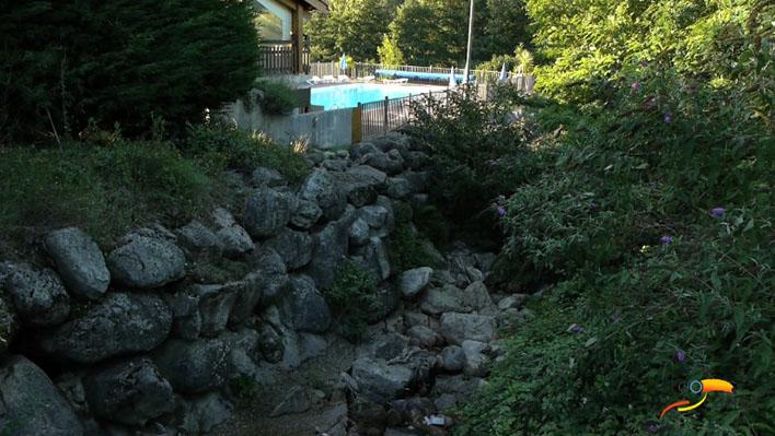 Camping - Camping de Belos - Thueyts - Rhône-Alpes - France
