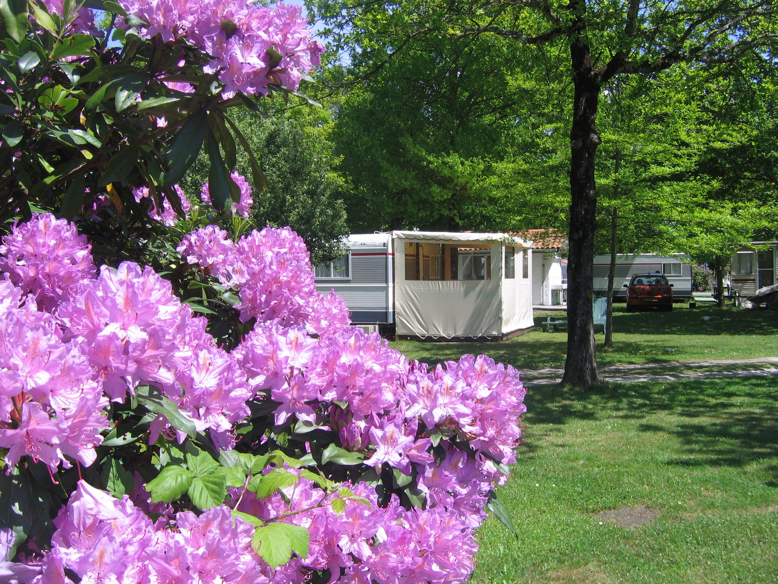 Camping - Hourtin - Aquitaine - Le Littoral