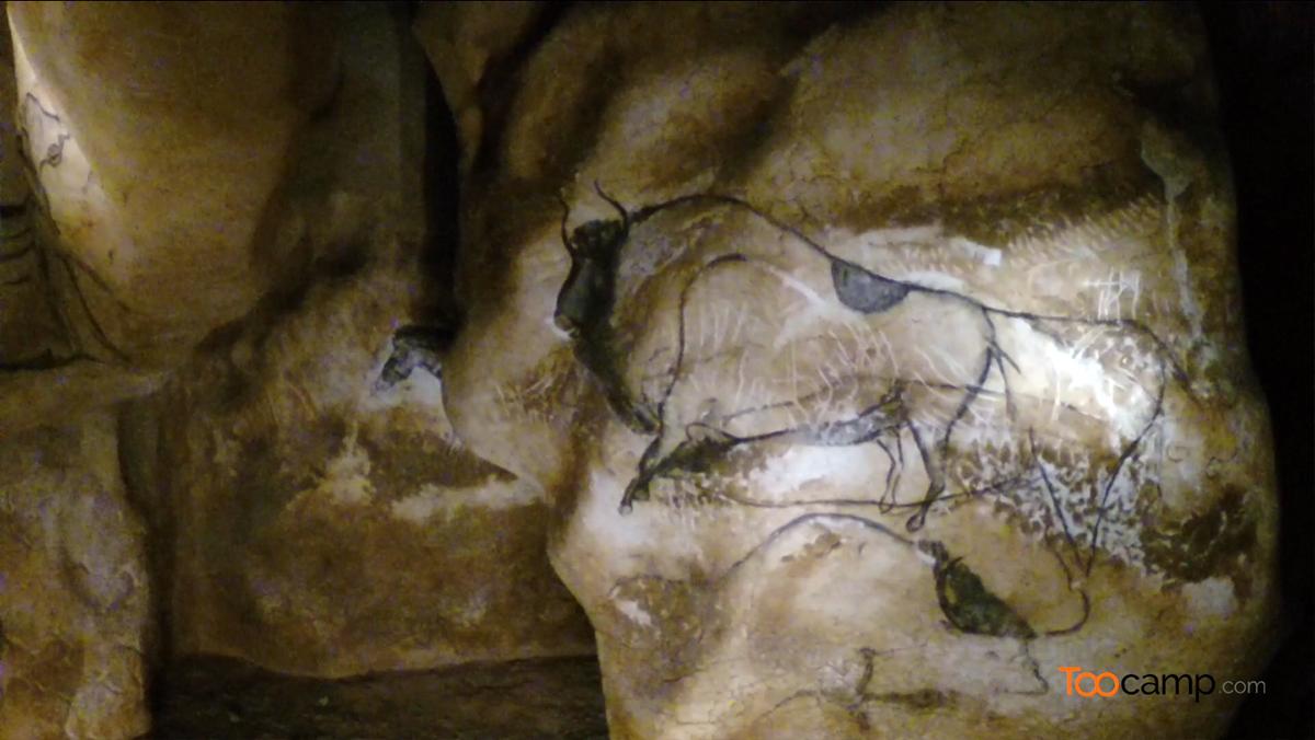 Visitez la Caverne du Pont d'Arc