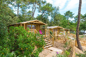 Camping - Soulac-sur-Mer - Aquitaine - Camping des Pins