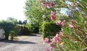 Camping - Montolieu - Languedoc-Roussillon - Camping de Montolieu