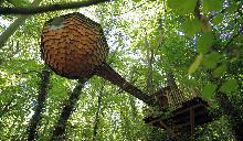 Camping - Domaine de Saint Jean - Saint-Jean-des-Mauvrets - Pays de Loire - France