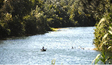 Camping - Montfrin - Languedoc-Roussillon - Belle-rive