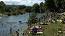 Camping - Le Provençal - Vallon-Pont-d'Arc - Rhône-Alpes - France