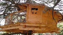Camping - Domaine Saint Jean de l'Arbousier - Castries - Languedoc-Roussillon - France